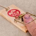 Mousetrap - Ouch!